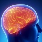 Fysiotherapie helpt de schade van een beroerte te beperken